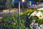 När vintermörkret sänker sig över villaträdgården kan rätt belysning ge den helt nytt liv och nya spännande former.