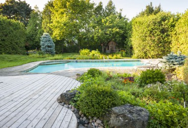 Pool i trädgård